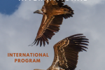 International Program Biennial Report