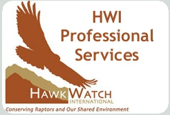 HWI Professional Services