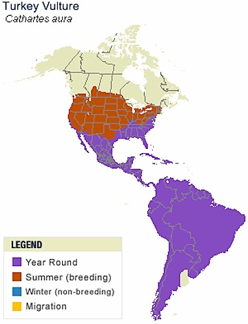 Turkey Vulture map