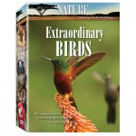 Nature 6 Disk Collection: Extraordinary Birds