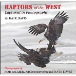 Raptors of the West (Captured in Photographs)