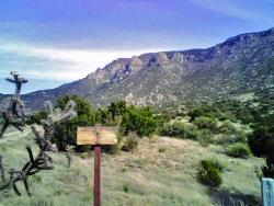 Sandia Mountains, NM HawkWatch