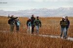 Winter HawkWatching at The Great Salt Lake Shorelands Preserve