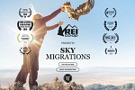 Sky Migrations Now Available